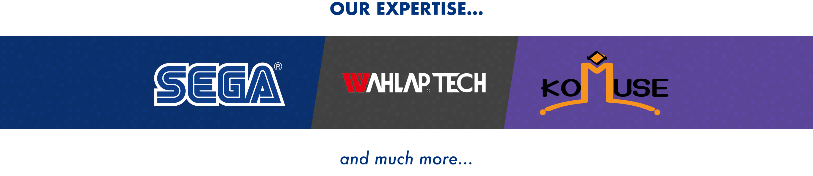 Our technical expertise includes Sega, Wahlap Tech and Komuse